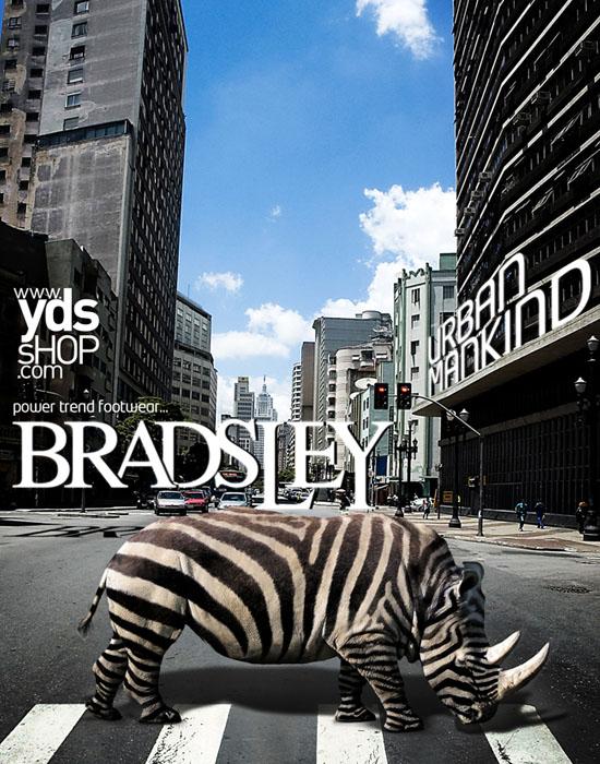 Bradsley by ~mauank