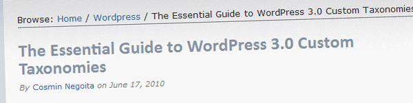 essential-guide-wordpress-custom-taxonomies