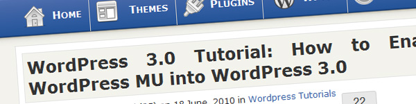 wordpress-3-0-enable-wordpress-multisite-tutorial