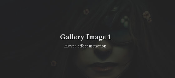 wordpress-gallery-part1-rollover-2