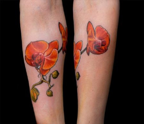Orchid Tattoo 38