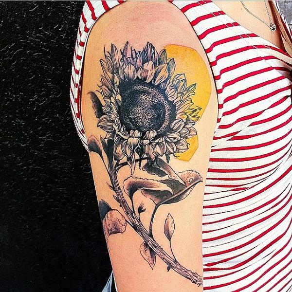 Sunflower 22