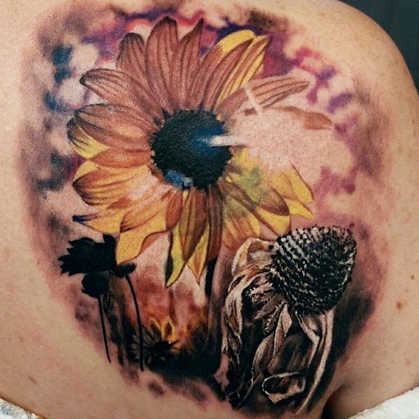 Sunflower 23