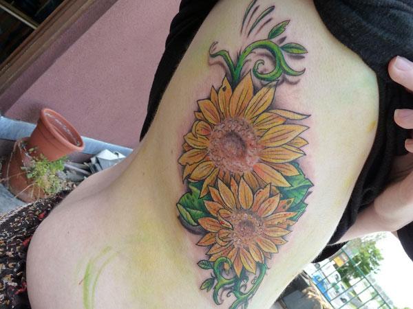 Sunflower 27