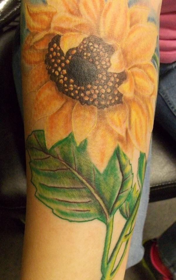 Sunflower 30