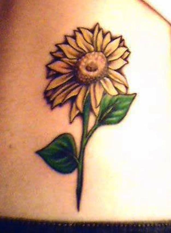 Sunflower by Sherree Walker