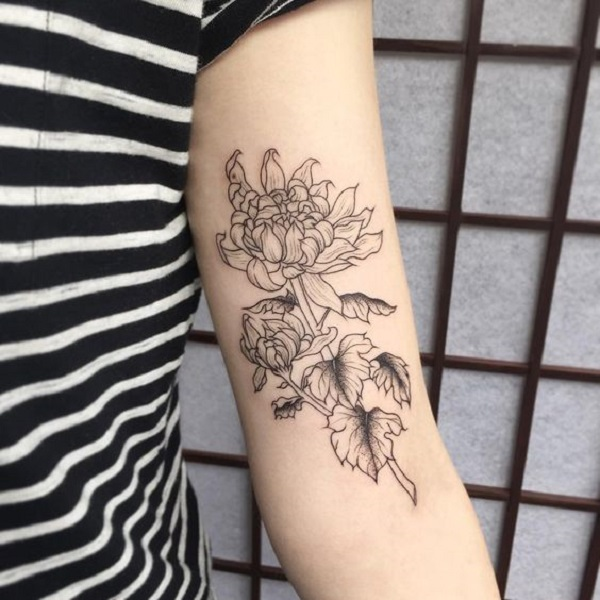 65 Chrysanthemum Tattoo Ideas